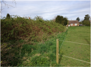 Proposed residential development site in Bunwell, Norfolk