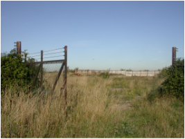 Bronfield Site in Suffolk - development opportunity and ecological habitat