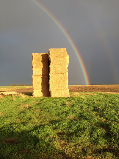 Rainbow and bales in the Fens